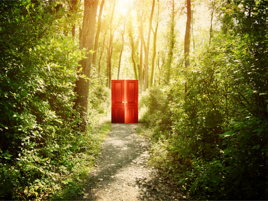Red Door in Forest
